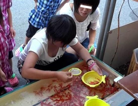金魚すくいしてるJS少女の胸チラ盗撮!