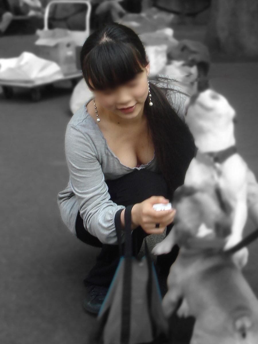 犬と戯れるお姉さんの巨乳谷間に釘付け!