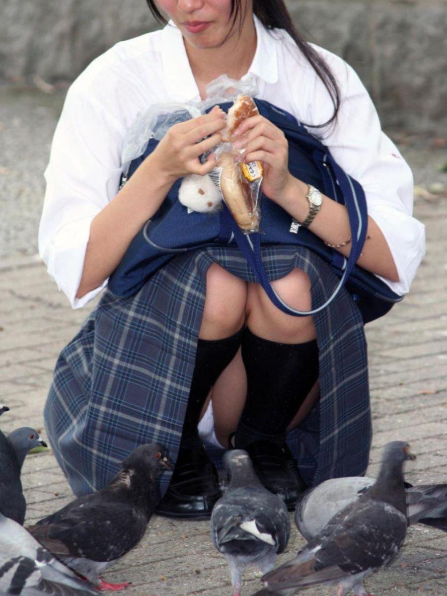 鳩にパンをあげてる制服女子校生のパンチラ盗撮!