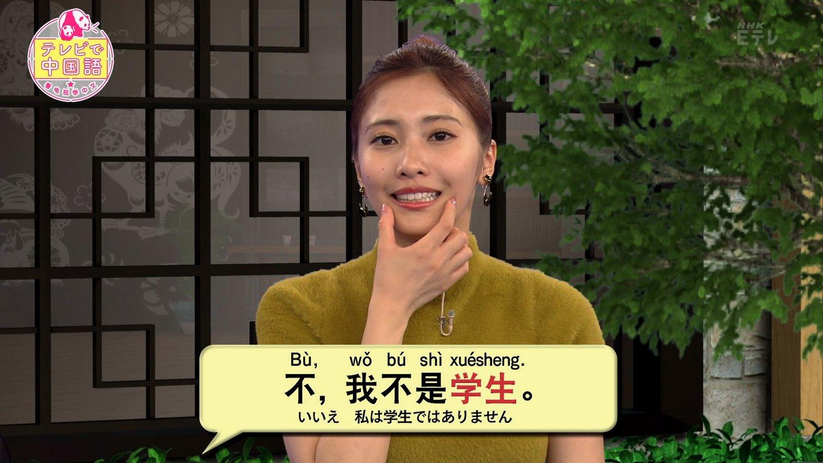 佐野ひなこ_着衣巨乳_テレビで中国語_05