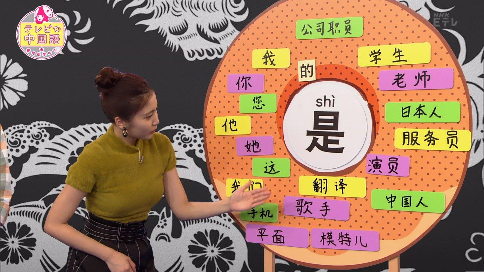 佐野ひなこ_着衣巨乳_テレビで中国語_09