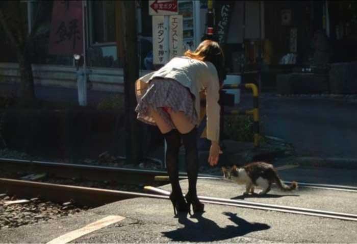 猫に触れようとするお姉さんのパンチラ!
