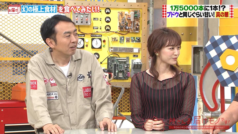 新井恵理那_女子アナ_シースルー_キャプエロ画像_02