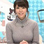 【GIF画像あり】『猫のひたいほどワイド』岡村帆奈美アナのオッパイが異常にデカくて釘付けになる!